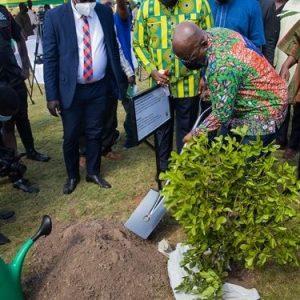 Akufo-Addo-tree-planting