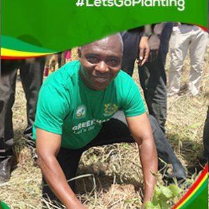 Tree-planting DCD